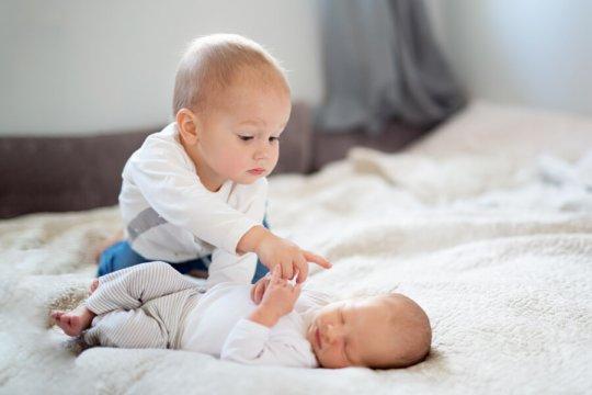 sesje zdjęciowe niemowląt